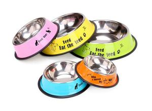 Stainless steel pet bowl 1904002